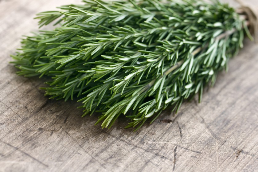 how to cut thyme leaves