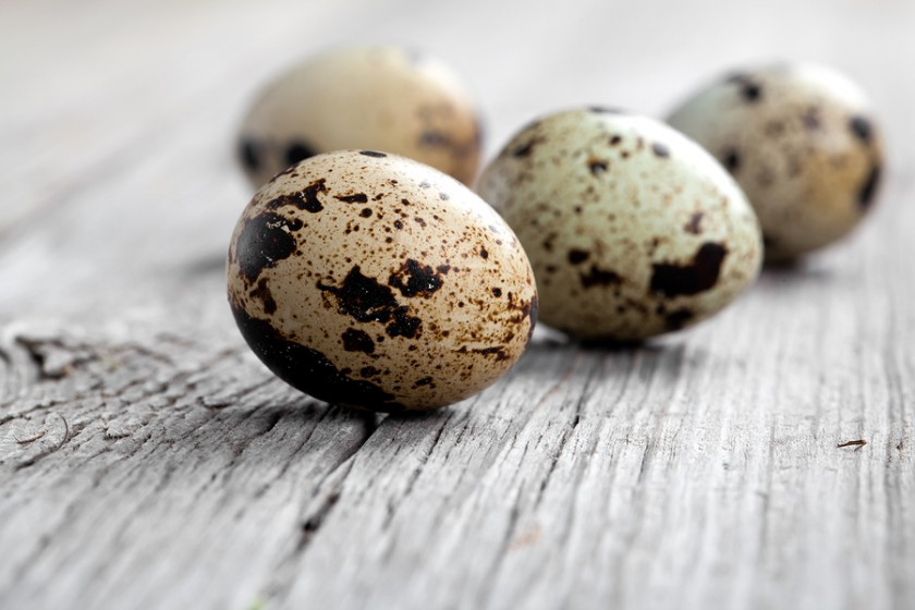 5 Reasons Why You Should Add Quail Eggs to Your Diet ...