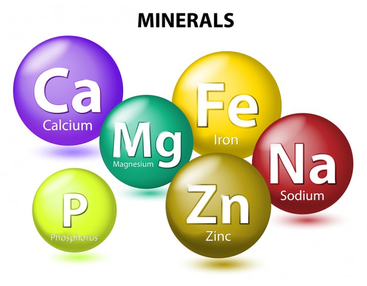 Image result for minerals food